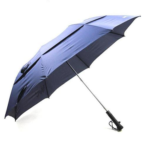 79a373322a02b Two Fold Umbrella at Best Price in India