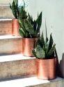 Plain Copper Plant Pots, For Home