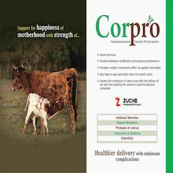 Veterinary Hydroxyprogesterone Injection