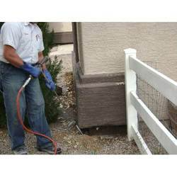 Termite Pest Control Service