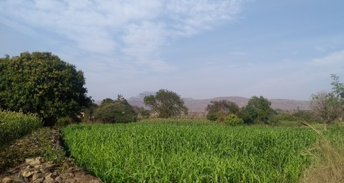 2 Acres Agricultural Land