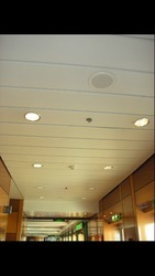 Aluminum False Ceilings Works