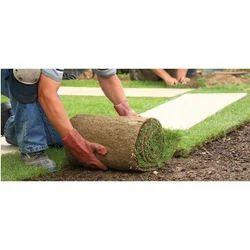 Residential Landscape Designing Service