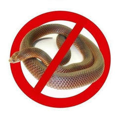Image result for snake control