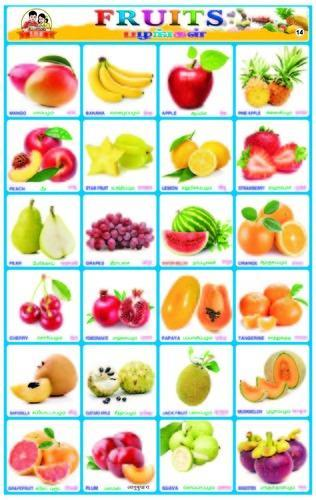Fruits Sticker Charts  Sunrise Publications  Manufacturer In Pkn
