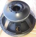 A Plus 18x401 Speaker
