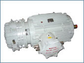 Dual Speed FLP Brake Motor
