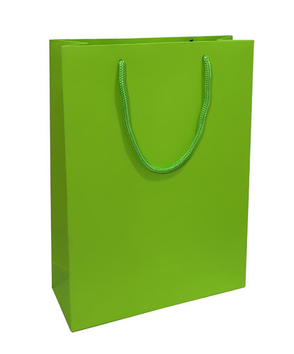 Paper Bag Solid - Parrot Green