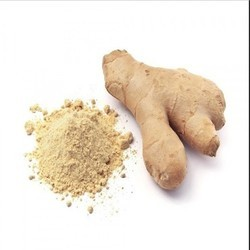 DRY GINGER AND PURE POWDER