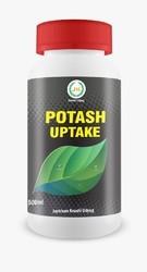 Potash Uptake
