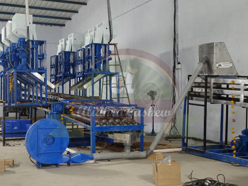 Automatic Cashew Nut Cutting Line