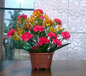 Fresh Decoration Flowers