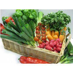 Frozen Vegetables Refrigerated Transportation