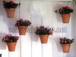Wall Mounted Flower Pot