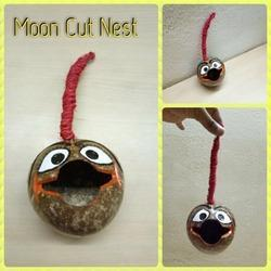 Moon Cut Nest