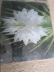 Printed Glass