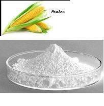 Sodium Starch Glycolate Maize
