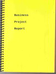 project report services in noida