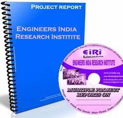 Project Report on Bulk Drug