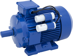 AC Powered Electric Motors