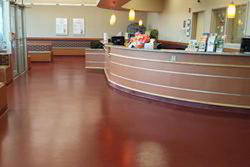 Institutional Carpet Flooring Service