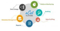 Ecat Data Quality Solution