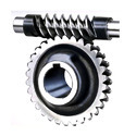 Worm Gear & Shaft