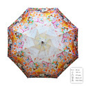 Printed Ladies Imported Umbrella