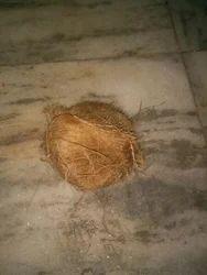 Assamese Coconut