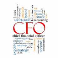 Best Virtual CFO