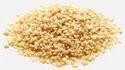 Sesame Seeds Testing Services