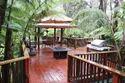 Tree House Construction India
