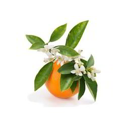 Orange Floral Water