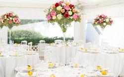 Table Decoration Services, in Uttar Pradesh