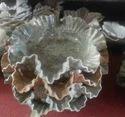 Stone Decorative Items