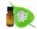 Camphor Essential Oil ( Cosmetic Grade )