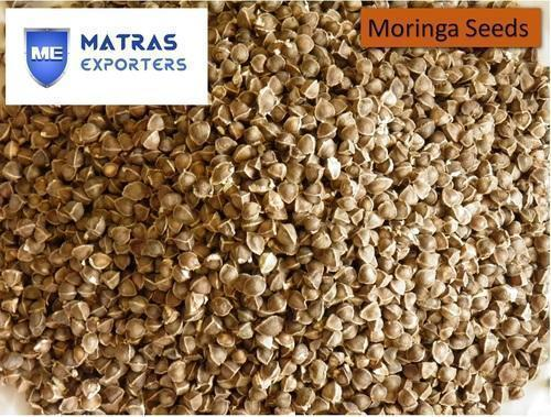 Natural  Moringa Seeds