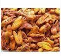 Rampatri Spice