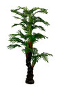 Decorative Artificial Palm Tree