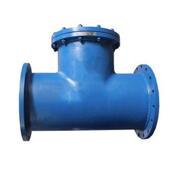 Flanged T Type Strainer