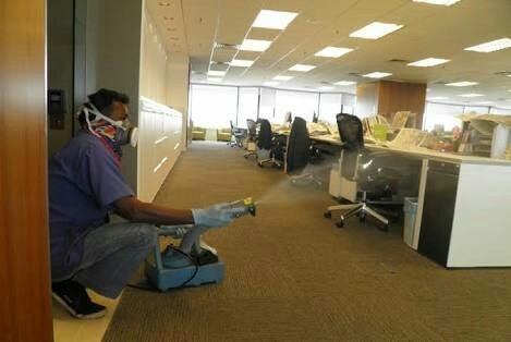 Pest Control Services For Office