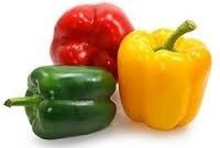 Coloured Capsicum (Red & Yellow), Packaging: Carton
