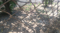 Boundaries Fencing Wire