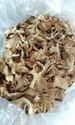 Dried Oyster Mashrooms
