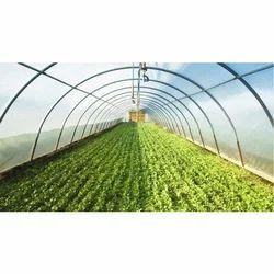 Indoor Farming Consultancy Service