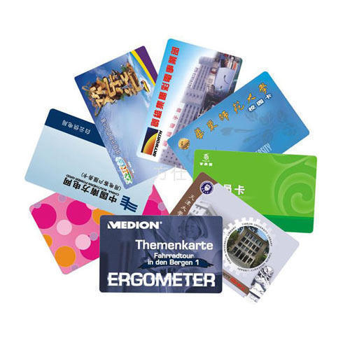 Pvc Cards Printing Services Wholesale Trader From Thrissur