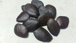 Agathosma Betulina Herbal Seed
