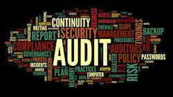 Network Security Audit Services
