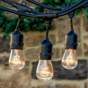 Light Bulb, Lamp & Lighting Fixtures