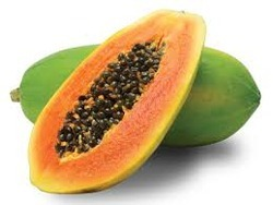Papaya Seed Extract